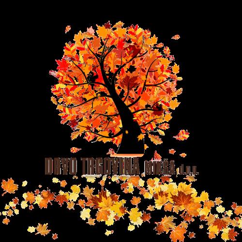 Jer kad trebate drvo, trebate nas - (OSB, LAMINATI, GREDE, SOBNA VRATA, GRAĐA, KROJENJE)